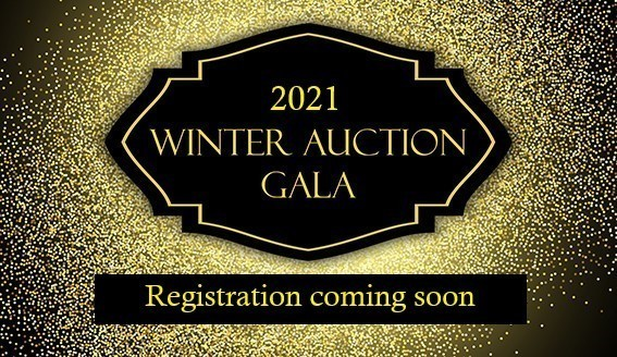 Auction 2021 Registration Coming Son